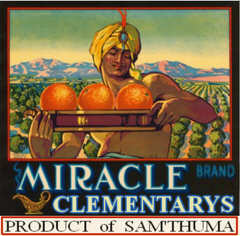 Miracle Fruit Cooperative logo